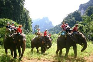 Прогулка на слонах в Тайланде